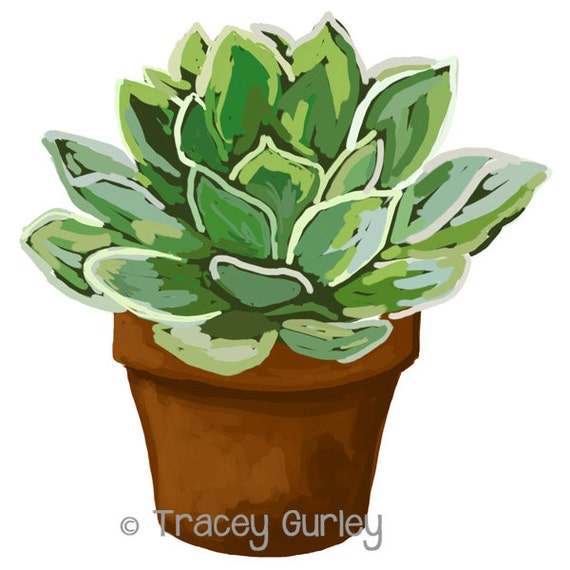 potted plant clip art png