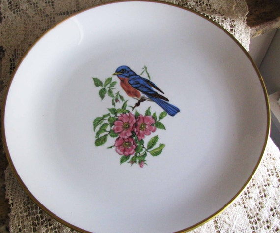 bavaria schumann arzberg germany beautiful blue bird by jjantiq. Black Bedroom Furniture Sets. Home Design Ideas