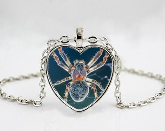 Blue Tarantula Spider Photo Pendant Necklace //  Heart Shaped Arachnid Pendant