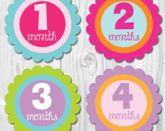 Monthly Baby Stickers, Monthly Baby Sticker, Girl Monthly Baby Stickers