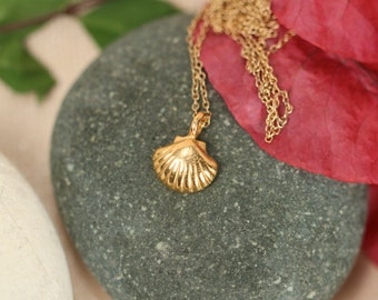 Gold shell necklace // shell necklace // beach necklace // summer necklace // layering // a 22k gold vermeil shell on 14k gold vermeil chain