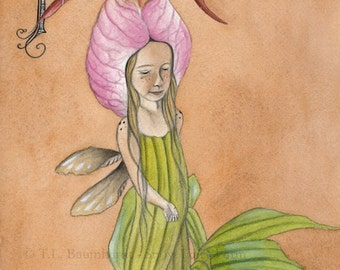 Fairy Art Print (reproduction) - P is for Pink Lady's Slipper, unmatted, by Snow Fairy Cottage