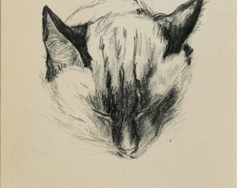 "Matted Vintage Cat Print Siamese Cat by Clare Turlay Newberry C. 1944 10x10"" Vintage Decor"