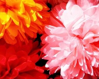 "10 x 14""  paper poms Wedding party - wedding decoration - wedding flower -bridal - baby shower - birthday party- photoshoot"