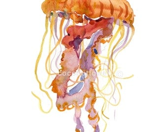 Jelly Fish  - Animal Painting - Size 8x10in - Original Watercolor  Art- Nursery Art Print
