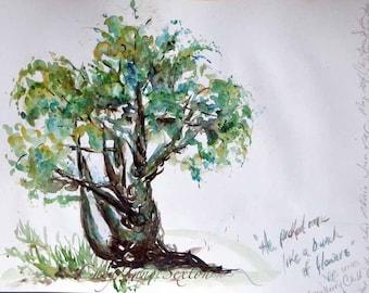 Watercolor Juniper Bonsai Tree ORIGINAL of  Blue Sepia Tree  recycled paper