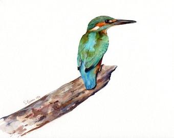 Kingfisher Giclee Print, Watercolor bird painting - Nature illustration, Wildlife art, Birdwatching - Blue, green, rust feathers