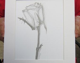 Single Rose Original Pencil Drawing