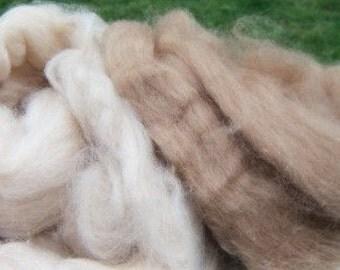 Baby Camel Roving Duo - golden & cream combed top fiber 1 ounce 28 gram