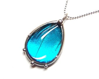 Real Blue Morpho Butterfly Teardrop Necklace