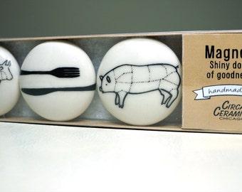 magnet set for carnivores. (3pk)