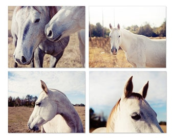 horse photography collection, animal photography, horse decor, photography set of 4, horse prints, rustic farm decor