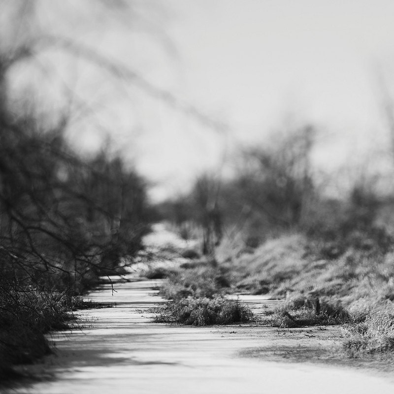 Winter landscape Kansas stream Trina Baker Photography