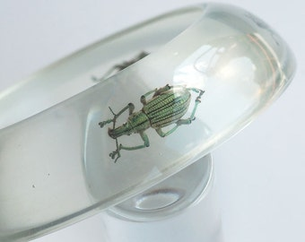 Saucer shaped clear transparent lucite bracelet with real insects