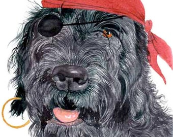 Black Pirate Labradoodle reproduction