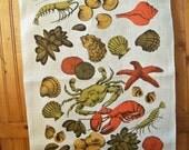 Vintage Designer Tea Towel - Sea Creatures - Starfish - Shells
