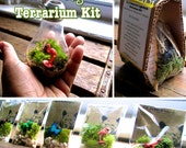 D.I.Y Recycled light bulb terrarium kit with your choice of animal figurine by nikdapooh designs, hanging terrarium, eco gift, no plant care