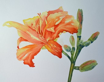 Flower Art, Fine Art-Watercolor Painting of Orange and Yellow Day Lily