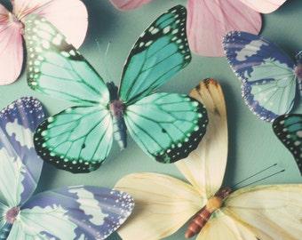 Girls wall art, butterfly photo, pastel butterflies, blue, pink, nursery decor, butterfly art, girls room decor - My Hearts a Flutter