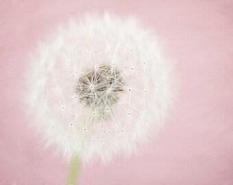 Pink dandelion photograph, whimsical nursery art, kids wall art, girls wall art, wish, dream, pastel,  shabby chic decor - Pink Dandelion