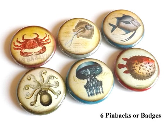 Sea Fish Ocean Beach PINBACKS button PINS BADGES magnets coastal stocking stuffers octopus jellyfish party favor nature flair nautical gifts
