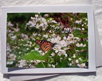 Happy Birthday! Monarch Butterfly on Blackberries Photo Card 5 x 7 With Envelope