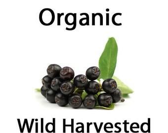 Maqui Seeds - 15 Organic Wild Harvested Maqui / Chilean Wineberry (Aristotelia Chilensis) Seeds