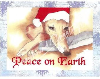 Greyhound Christmas Cards - Sue Monahan Peace on Earth - Set/4