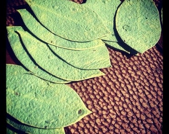 Wildflower Seeded Handmade Paper Leaf Favors - 50 favors ~ 3 inch
