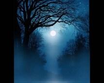 tree art,  landscape art, moonlight, painting, moon art, blue night limbs, print, twisted limbs, full moon, night sky, tangled branches