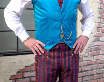 Purple and Red Stripe 6 Button Flap Front Steampunk Tapestry Pants