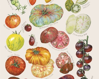 Heirloom Tomato Cards