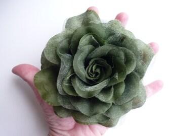 SHEER ROSE , Rose Flower, Fern Green  /  TG - 05