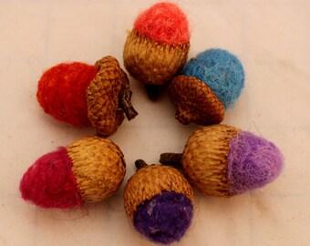 Acorn, 6 Needle Felted Acorns #3