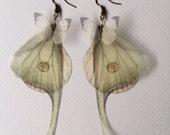 Handmade Moth Earrings, (Actias) Luna Moth Butterfly Earrings, Silk Organza Butterflies and Wings Earrings, Made to Order, I Will Fly Away