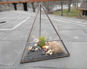 Triangle Glass Terrarium