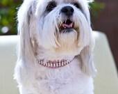 Swarovski Crystal Rhinestone Dog Collar - 4 Row Rose/Clear on Pink - 16 Inch Collie Size