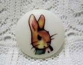 Beatrix Potter Peter Rabbit Clothing Button