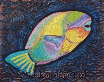 Modern Cross Stitch Kit, Parrot Fish, Laura Barbosa, Colorful