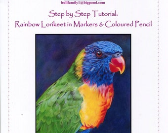 Step by Step Art Tutorial - Rainbow Lorikeet in Markers and Coloured Pencil