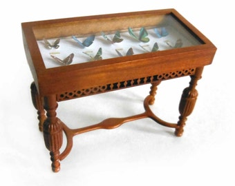 Miniature Butterfly Display Case