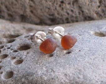 Burnt Amber Sea Glass Sterling Silver Studs Post Earrings (640)