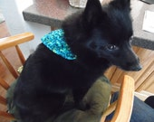 Small Pet Bandanna, Soft dog bandana, Collar Cover, Dog Clothing, Ready to Ship