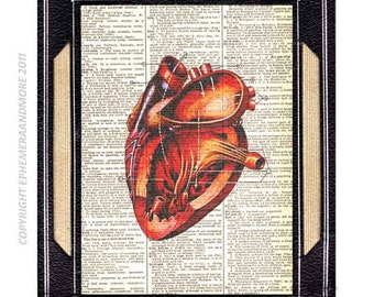 ANATOMICAL HEART art print wall decor Red Heart illustration human anatomy medical science cardiology on vintage dictionary book page 8x10