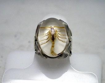 Golden Scorpion Ring
