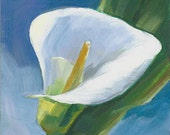 Calla Lily Flower Original Oil Painting, White Lily 5 x 5 inches on Panel