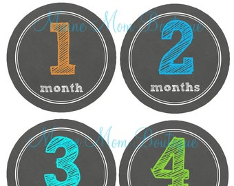 FREE GIFT, Baby Month Stickers, Monthly Baby Stickers,  Bodysuit Milestone  Stickers, Baby Newborn Photo Prop