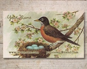 Business Cards - Custom Business Cards - Jewelry Cards - Earring Cards - Display Cards - Vintage Birds with Nest, Robin Egg - No. 39
