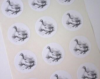 Goose Stickers One Inch Round Seals