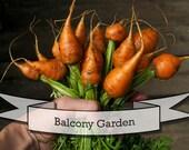 Balcony Gardening Seed Gift Set in Tin Box - Urban Garden, Patio and Container Gardening